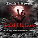 Cold Hollow Audiobook by Emilie J. Howard Narrated by J. Scott Bennett