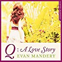 Q: A Love Story Audiobook by Evan Mandery Narrated by James Fouhey