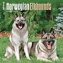 Norwegian Elkhounds 2014 Calendar