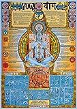 Empire 536501 Educational - Bildung Yoga Bildungsposter Plakat Druck - Version in Englisch - Größe 68 x 98 cm