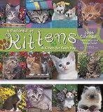 echange, troc - - 2006 Pocketful of Kittens Calendar (11