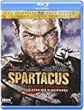 Spartacus: Blood & Sand (Bilingual) BD [Blu-ray]
