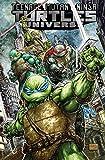 img - for Teenage Mutant Ninja Turtles Universe, Vol. 1 book / textbook / text book