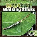 Walking Sticks (Bugs!)