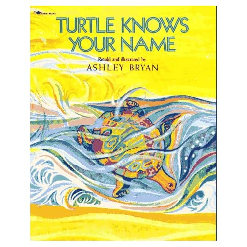 Turtle Knows Your Name