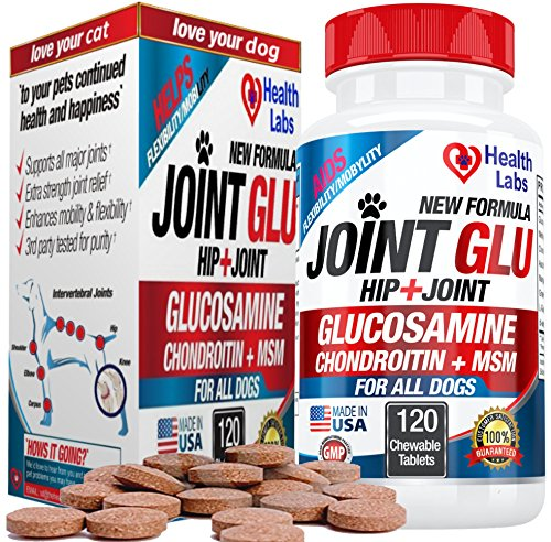 Glucosamine Hip & Joint Chew for Dogs with Chondroitin, MSM, Vitamin C & E - Maximum Strength Natural Pet Supplement for Arthritis Knee Back & Muscle Discomfort - Advanced Formula 100% Satisfaction (Young Again Dog Food compare prices)