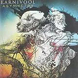 Asymmetry-International Deluxe Version by KARNIVOOL (2013-08-13)