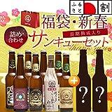 【世界が認めた新潟の地ビール】 スワンレイク クラフトビール 新春 福袋 飲み比べ 10本セット 【ふるさと割30%OFF商品】