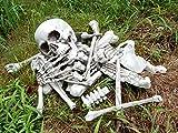 1/1サイズ死者は囁く恐怖のバラバラ骸骨ドクロハロウィンイベントインテリア に