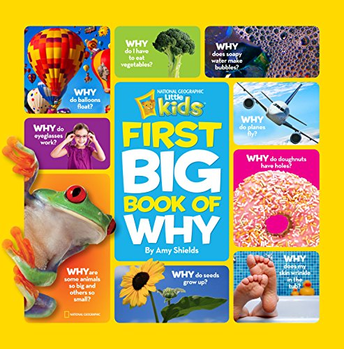 Kids on Fire: Big Book of Why From National Geographic Kids