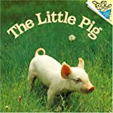 The Little Pig (Pictureback(R)) (0394887743) by Dunn, Judy