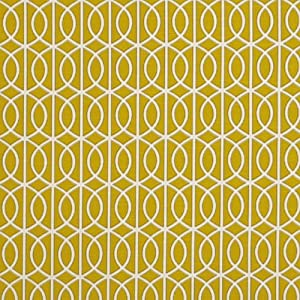 Amazon.com: Bella Porte Citrine by Robert Allen@Home Fabric