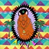 Image of album by Wavves