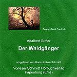 Der Waldgänger   Adalbert Stifter