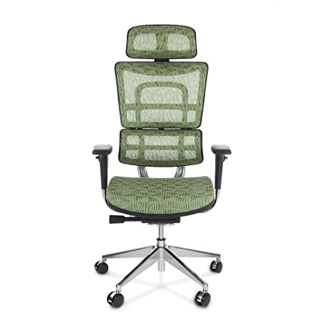 iKayaa Mesh Ergonomic Office Chair Swivel Executive Computer Desk Chair W/ Lumbar Support Tilt Slide Headrest Pass ANSI/BIFMA Standard