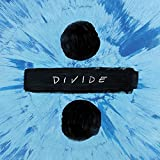 #6: Divide Deluxe