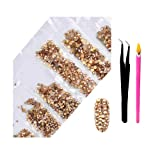 2800Pcs Nail Supplies Rhinestones - Crystal AB Nail Art 6 Mixed Sizes Round FlatBacks Rhinestones with Wax Rhinestone Pen Tweezers for Art Nails Decoration Face Makeup Clothes Shoes(Champagne) (Color: Champagne, Tamaño: one size)