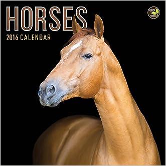 2016 Horses Mini Calendar