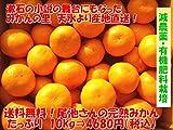 訳あり 減農薬有機肥料栽培 熊本 天水産 尾池さんの完熟みかん10kg(S~Lサイズ)