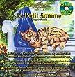 Hemi-Sync - CD audio Le petit somme