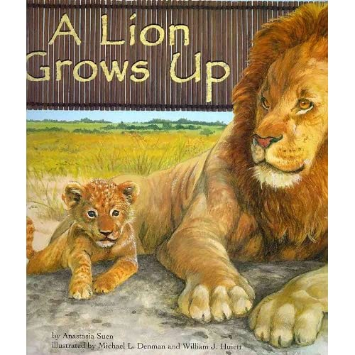 A Lion Grows Up (Wild Animals (Picture Window Paperback))
