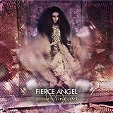 Fierce Angel pres Fierce Disco VI