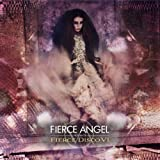 Fierce Angel pres Fierce Disco VI Various Artists