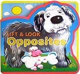Lift--Look-Opposites
