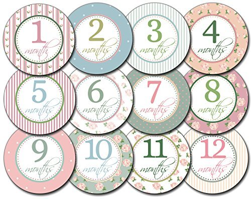 SALE! Baby Girl Monthly Stickers - Great Keepsake for Babies, Baby Girl Shower Gift Idea or Milestone Photo Prop - Easy to Peel, Stick, Shoot and Remove from Clothing and Onesies Size: 1-12 Months Color: Shabby Chic, Model: , Newborn & Baby Supply