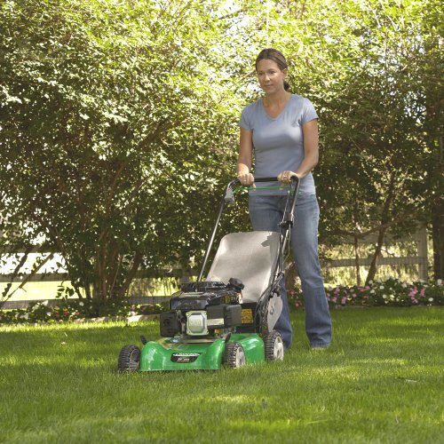 Lawn Boy 10625 20-Inch 149cc 6-1/2 GT OHV Kohler Gas Powered Self Propelled Lawn Mower With Blade Override System picture