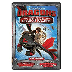 Dragons: Dawn of the Dragon Racers