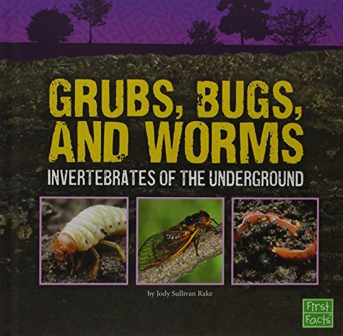 grubs-bugs-and-worms-invertebrates-of-the-underground-underground-safari-by-jody-sullivan-rake-2015-