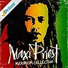 Maximum Collection [Clean]