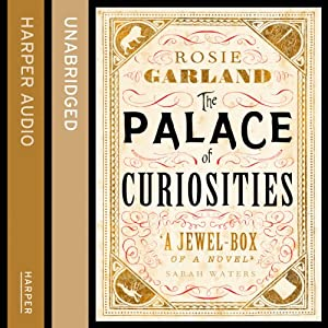 The Palace of Curiosities Audiobook