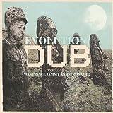 Evolution Of Dub Vol. 6 - Was Prince Jammy An Astronaut?