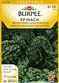 Burpee 64642 Spinach Bloomsdale Long-Standing Seed Packet