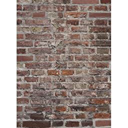 Photography Weathered Brick Wall Floor or Background Mat Cf013 Rubber Backing, 4\'x5\' High Quality Printing, Roll up for Easy Storage Photo Prop Carpet Mat (Can Be Used for Decorating Home Also)