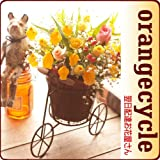 翌日配達お花屋さん 秋の風にゆらゆら揺れる!オレンジカラーのちょうちん型のお花をサイクルタイプのおしゃれなかごにアレンジしました。【送料無料】オレンジサイクル(サンダーソニアアレンジメント) [即日発送・翌日配達]  誕生日・記念日・お祝い・結婚祝い・お見舞い・歓送迎会・結婚祝いお礼の花の配達便