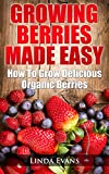 Growing Berries Made Easy: Step-by-Step Beginners Guide on How To Grow Organic Strawberries, Blueberries, Raspberries & Blackberries at Home