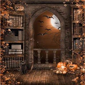 Halloween Night 10' x 10' CP Backdrop Computer Printed Scenic Background GladsBuy Backdrop DGX-133
