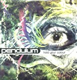 Pendulum Hold Your Colour [12
