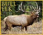 Bull Elk Calendar 2015
