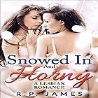 Snowed in and Horny Hörbuch von R.P. James Gesprochen von: Linda Shej
