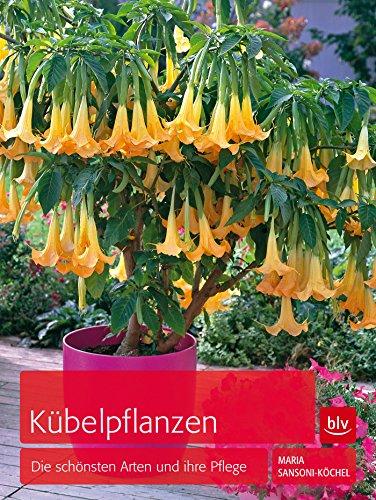 kubelpflanzen-die-schonsten-arten-und-ihre-pflege-german-edition