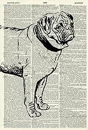 Pug DOG ART PRINT - DOG LOVER\'S GIFT - DOG ART PRINT - VINTAGE ART - ANIMAL Art Print - Illustration - Dog Picture - Vintage Dictionary Art Print - Wall Hanging - Home Décor - Book Print 466D