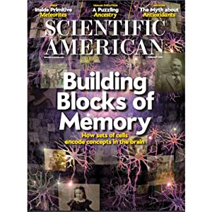 Scientific American, February 2013 Periodical