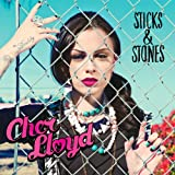 Sticks & Stones [VINYL] Cher Lloyd