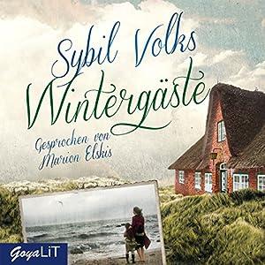 Wintergäste Hörbuch