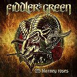 25 Blarney Roses
