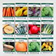Heirloom Vegetable Garden Seed Collection - Assortment of Gardening Seeds: Carrot, Summer & Winter Squash, Kale, Spinach, Cantaloupe, Cucumber, Radish, Onion, Pumpkin, Spinach & Tomato